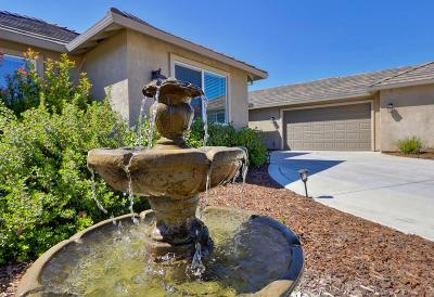 Orangevale Single Family Home For Sale: 9587 Sprow Ranch Lane