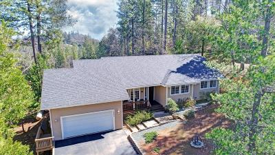 Pine Grove Single Family Home For Sale: 12940 Burnt Cedar Lane