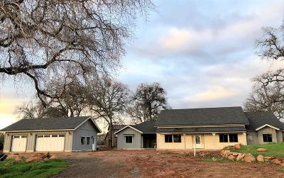 Placer County Single Family Home For Sale: 10287 Mount Vernon Road