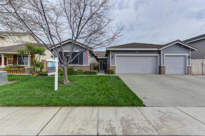 Elk Grove Single Family Home For Sale: 9409 Blue Diamond Way