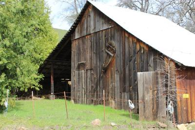 Amador County Residential Lots & Land For Sale: 17361 Climax Road