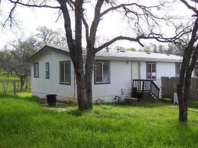 Bangor, Berry Creek, Chico, Clipper Mills, Gridley, Oroville Single Family Home For Sale: 4 Sunrise Hill Road
