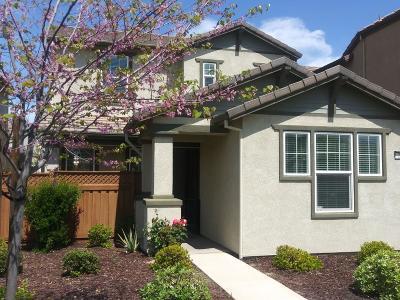 Mountain House Single Family Home For Sale: 283 West Saint Francis Avenue