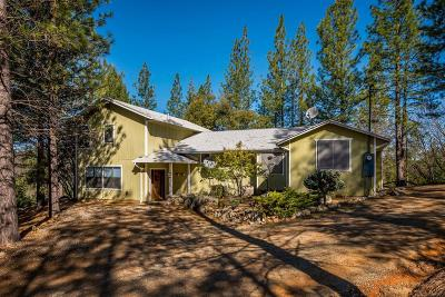 Grass Valley Single Family Home For Sale: 16740 Autumn Oak Road
