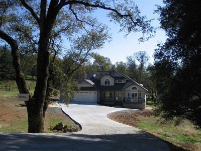 Auburn Single Family Home For Sale: 12101 Wanderer Road