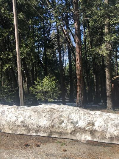 Pollock Pines Residential Lots & Land For Sale: 3580 Gold Ridge Trail