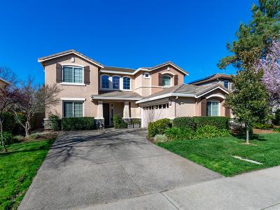El Dorado Hills Single Family Home For Sale: 1770 Toby Drive