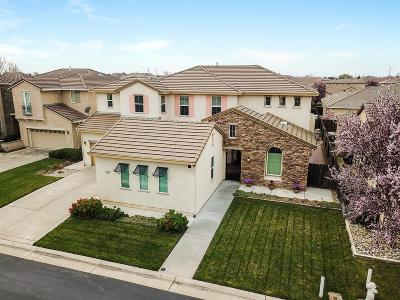 Elk Grove Single Family Home For Sale: 9642 Hahn Way