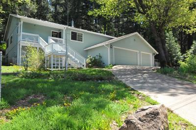 El Dorado County Single Family Home For Sale: 3113 Sesame Street