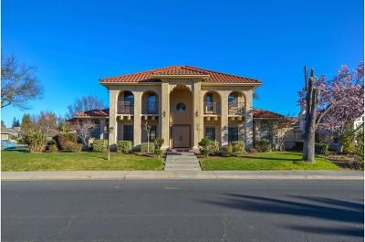 Modesto Single Family Home For Sale: 2505 Konynenburg Lane