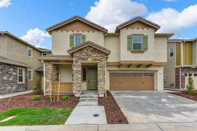 Rocklin Single Family Home For Sale: 1341 Orchid Court