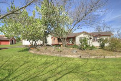 Elk Grove Single Family Home For Sale: 10076 Grant Line Road