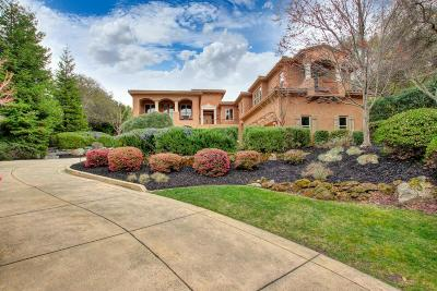 Placer County Single Family Home For Sale: 9060 Los Lagos Circle S.