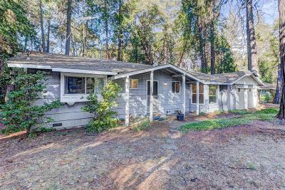 Nevada County Single Family Home For Sale: 13093 Mayflower Drive