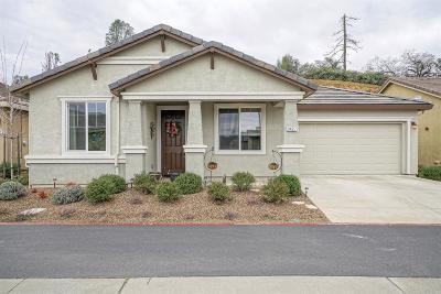 El Dorado County Single Family Home For Sale: 3427 Eskaton Drive