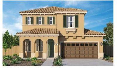 Rancho Cordova Single Family Home For Sale: 3943 South Aristotle Circle