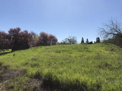 Galt Residential Lots & Land For Sale: 910 Ayers Lane