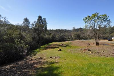 Placer County Residential Lots & Land For Sale: 3300 Nancy Drive