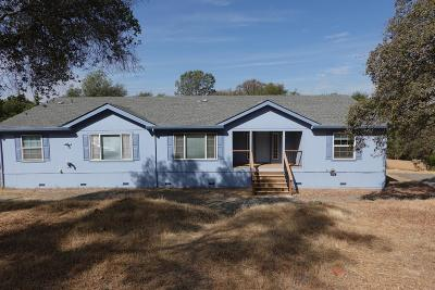 Grass Valley Single Family Home For Sale: 16016 McCourtney Road