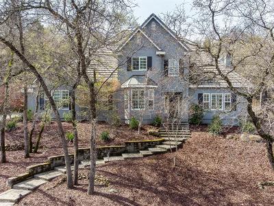 El Dorado Hills Single Family Home For Sale: 1382 Crocker Drive