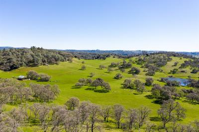 Amador County Commercial Lots & Land For Sale: North Quartz Mountain Road