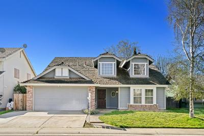 Sacramento Single Family Home For Sale: 8652 Daimler Way