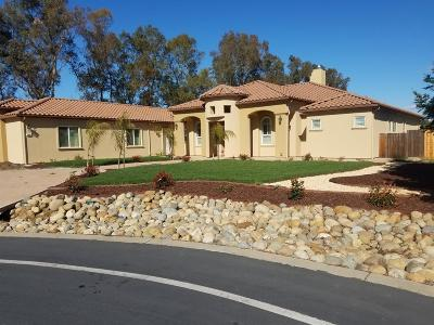 Elk Grove Single Family Home For Sale: 9913 Mango Lane