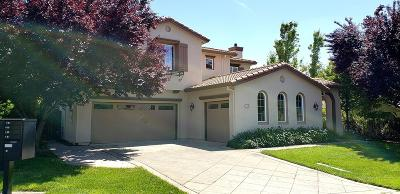 El Dorado Hills Single Family Home For Sale: 110 Miramont Court