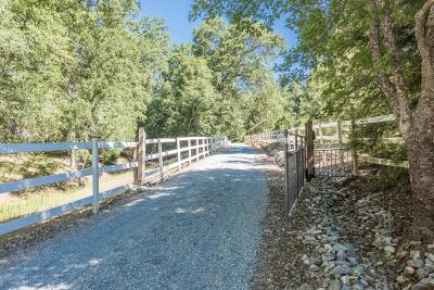 Placerville Single Family Home For Sale: 4848 Rivendale Road