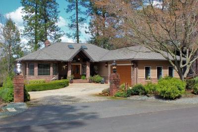 Auburn Single Family Home For Sale: 11216 Greenbriar Way
