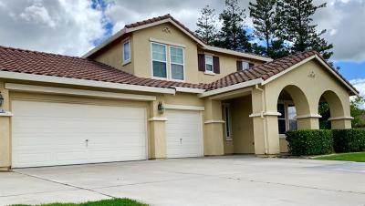 Ripon Single Family Home For Sale: 564 South Highland Avenue