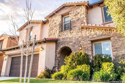 Manteca Single Family Home For Sale: 3955 Aplicella Court