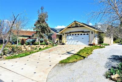 Copperopolis Single Family Home For Sale: 2141 Quail Hill Road