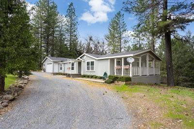 Pollock Pines Single Family Home For Sale: 5261 Shooting Star Road