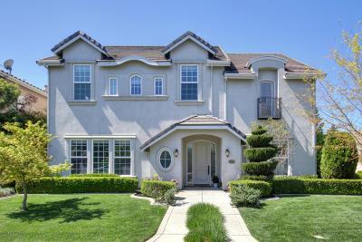 Sacramento Single Family Home For Sale: 825 Sierra Oaks Vista Lane