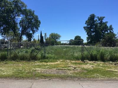 Sacramento Single Family Home For Sale: 240 South Avenue