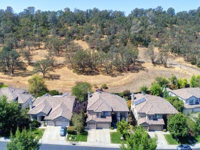 El Dorado Hills Single Family Home For Sale: 3866 Meadow Wood Drive