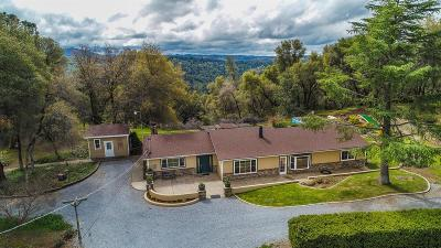 Placerville Single Family Home For Sale: 3244 Willow Glen Road