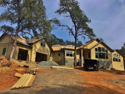 Auburn Single Family Home For Sale: 23235 Darkhorse Drive
