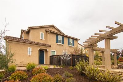 Folsom Single Family Home For Sale: 890 Blossom Rock Lane