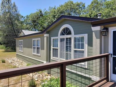 El Dorado County Single Family Home For Sale: 5040 El Rancho Drive