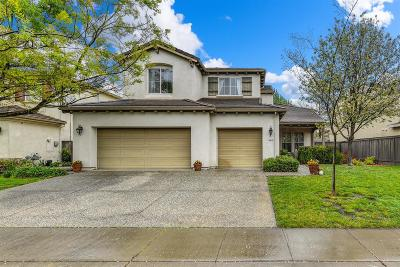 Elk Grove Single Family Home For Sale: 9819 Harrier Way