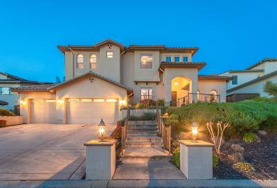 El Dorado Hills Single Family Home For Sale: 5025 Coronado Drive