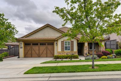El Dorado Hills Single Family Home For Sale: 5029 Arlington Way