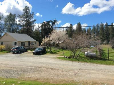Nevada County Single Family Home For Sale: 190 Upper Slate Creek Road