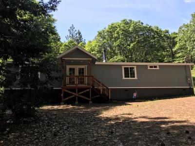 Single Family Home For Sale: 4500 Pacific Crest Trail