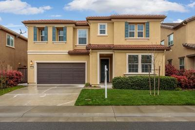 Roseville Single Family Home For Sale: 5248 Maestro Way