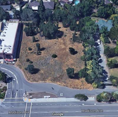 Fair Oaks Residential Lots & Land For Sale: 8933 Madison Avenue