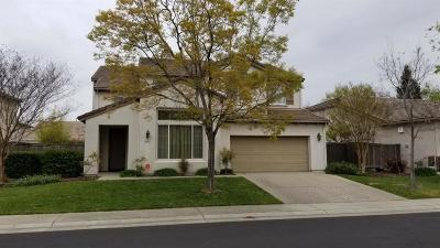 Elk Grove Single Family Home For Sale: 9777 Sun Kosi Way