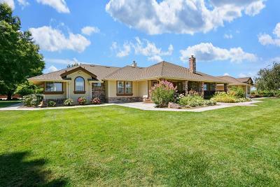 Galt, Rancho Murieta, Sloughhouse, Wilton Single Family Home For Sale: 10606 Arno Road